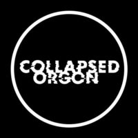 2018-08-22_review_collapsed_orgon